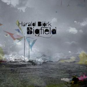 Harald Björk: Bigfield