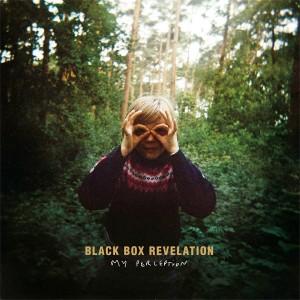 Black Box Revelation: My Perception