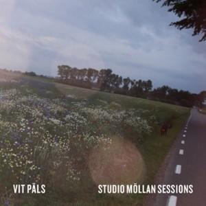 Vit Päls: Studio Möllan Sessions