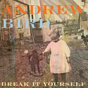 Andrew Bird: Break it Yourself
