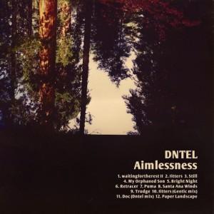 Dntel: Aimlessness