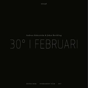 Andreas Söderström & Johan Berthling: 30° I Februari
