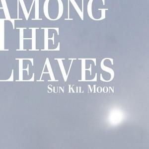 Sun Kil Moon: Among The Leaves
