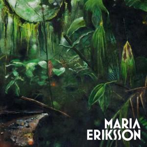 Maria Eriksson: Stjäl Det Du Behöver