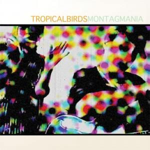 Montag Mania: Tropical Birds