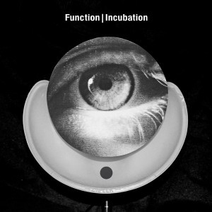 Function: Incubation