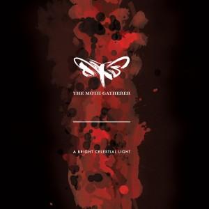 The Moth Gatherer: A Bright Celestial Light