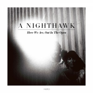 A Nighthawk: Here We Are, Out In The Open