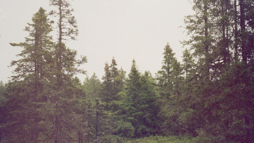 ALBUMPREMIÄR: Gidge – Autumn Bells