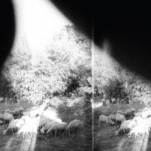 Godspeed You! Black Emperor: Asunder, Sweet And Other Distress
