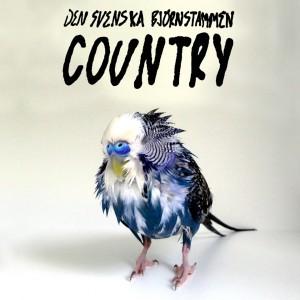 Den Svenska Björnstammen: Country