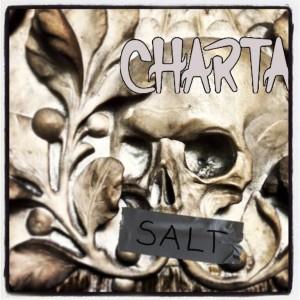 Charta 77: Salt