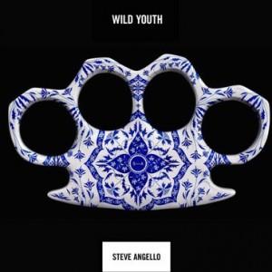 Steve Angello: Wild Youth