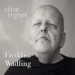 Freddie Wadling: Efter Regnet