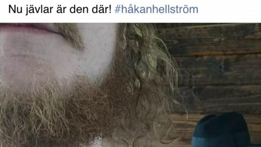 Tatuerade Håkan Hellström-citat i protest – här är resultatet