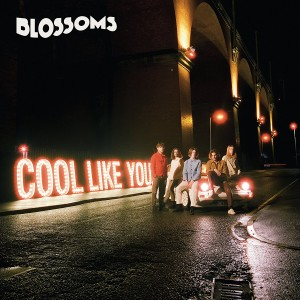 Blossoms: Cool Like You