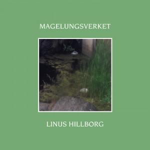 Linus Hillborg: Magelungsverket