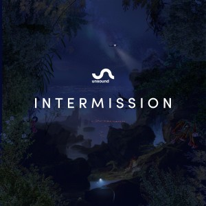 Diverse Artister: Unsound Intermission