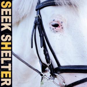 Iceage: Seek Shelter