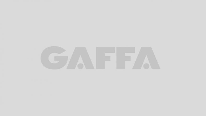 Den svenska björnstammen vinnare av GAFFA-priset